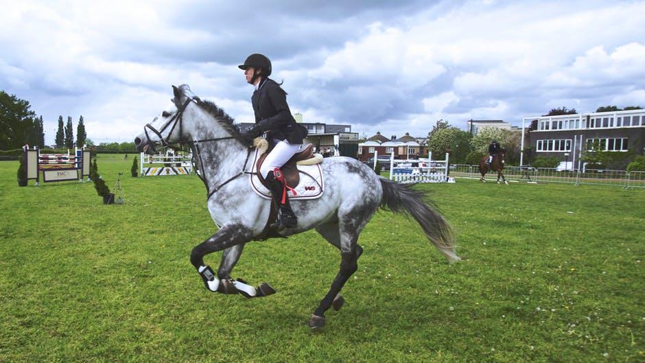 Häst på tävling
